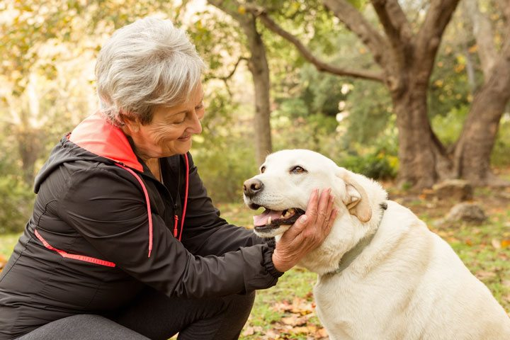 For the Love of Buddy – Why Granny Needs a Dog