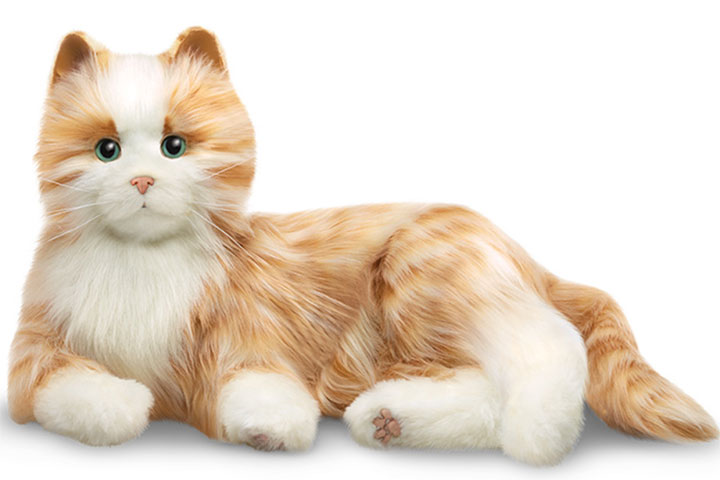 Hasbro Companion Cat