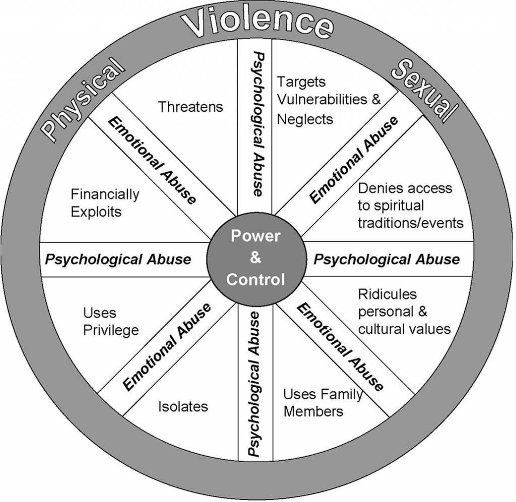 The Abuse in Later Life Wheel
