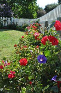 Karen's flower garden