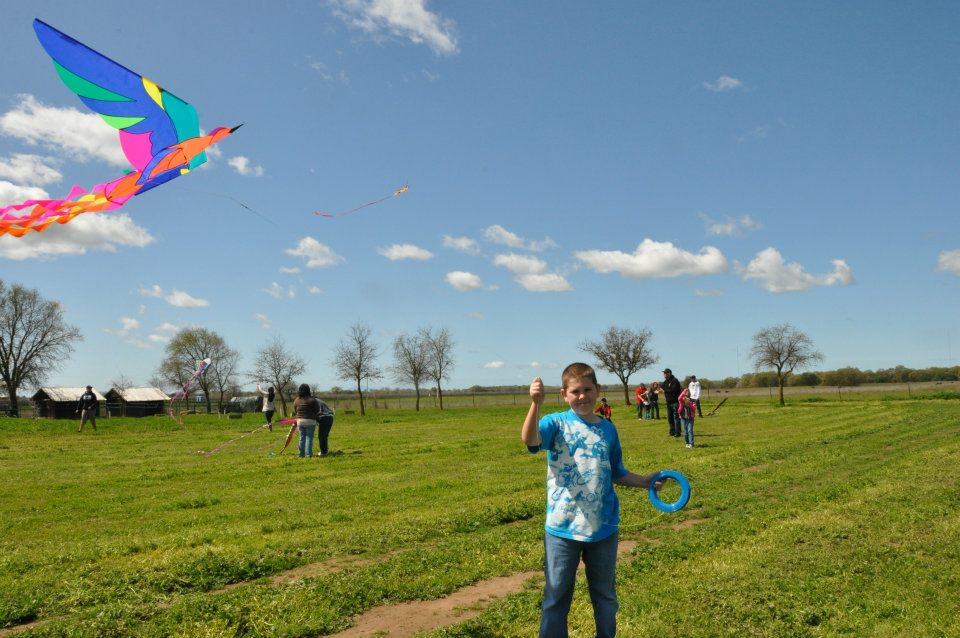 Punk on Kite day