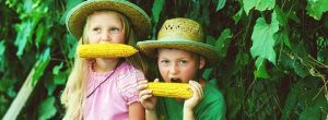 Summer Foods of Our Childhoods