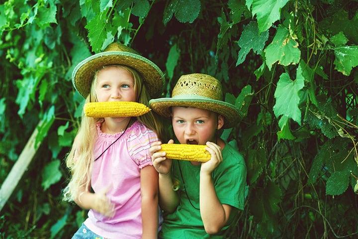 summer fun, corn on the cob